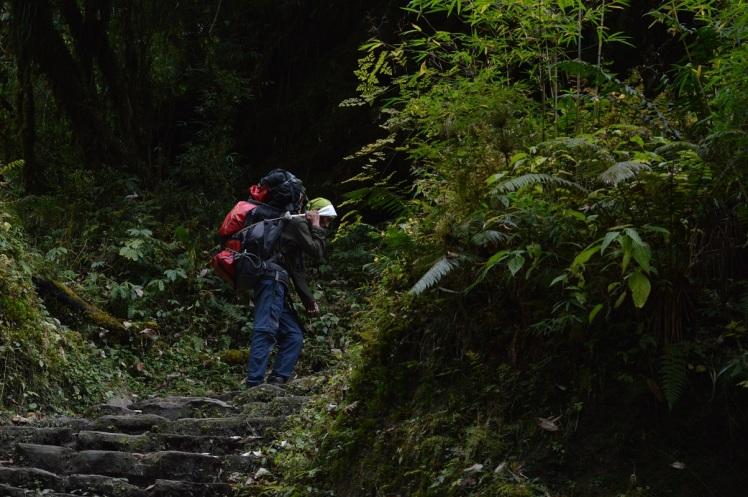 Foto Sherpa